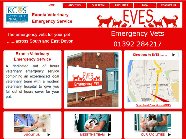 Emergency Vets Exeter